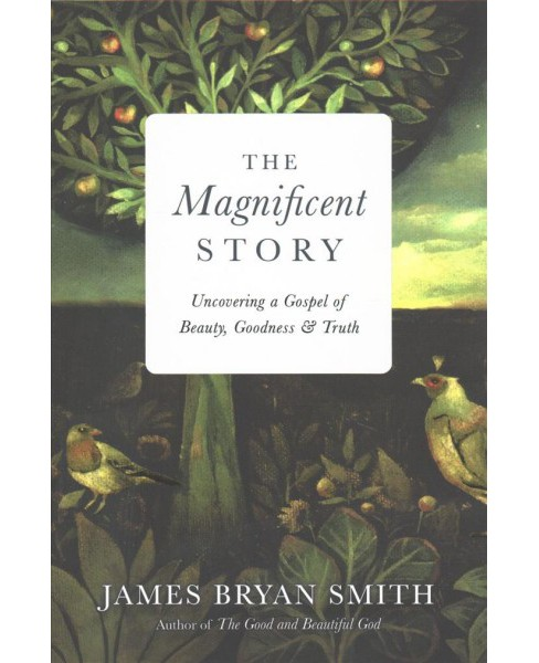 Magnificent Story : Uncovering a Gospel of Beauty, Goodness & Truth -  by James Bryan Smith (Hardcover) - image 1 of 1