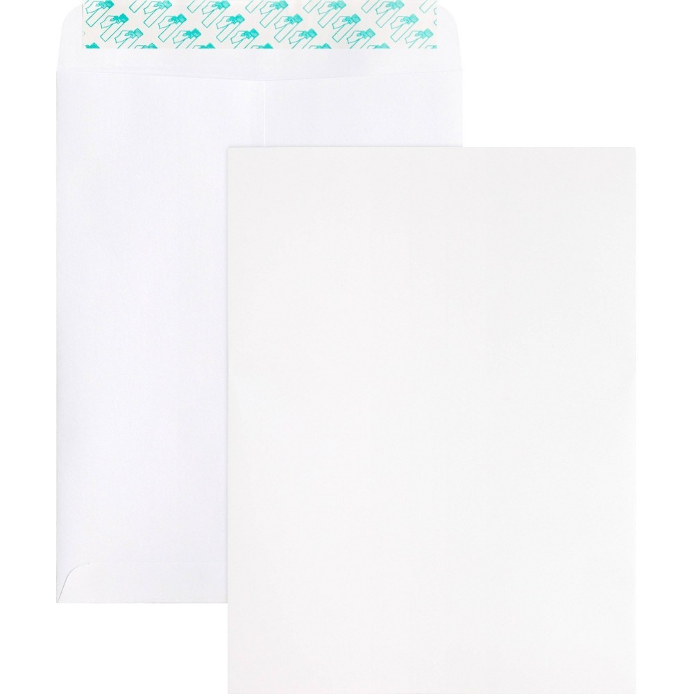 Image of Business Source 100ct Self Sealing Catalog Envelopes