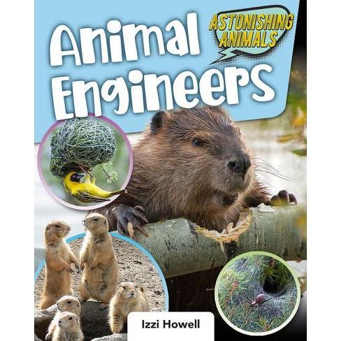 Animal Engineers - (Astonishing Animals) by  Izzi Howell (Paperback) - image 1 of 1