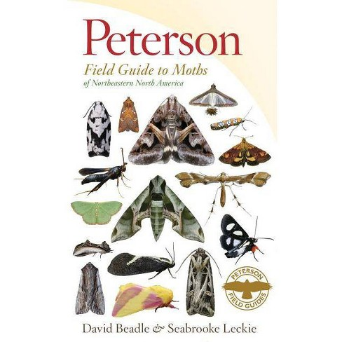 Peterson Field Guide to Moths of Northeastern North America - (Peterson Field Guides) (Paperback) - image 1 of 1