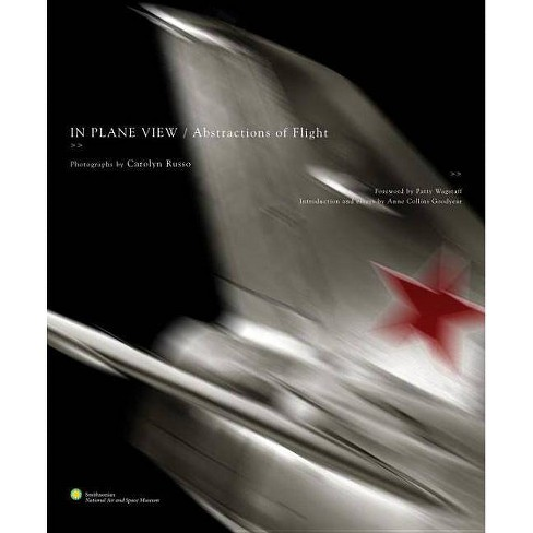 In Plane View - (Hardcover) - image 1 of 1