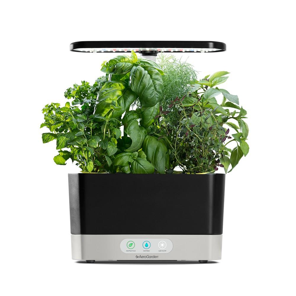 Aerogarden Harvest with Gourmet Herbs 6-Pod Seed Kit - Black