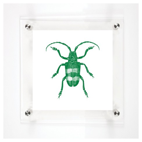 Mitchell Black - Beetles Paul Decorative Framed Wall Canvas - image 1 of 1