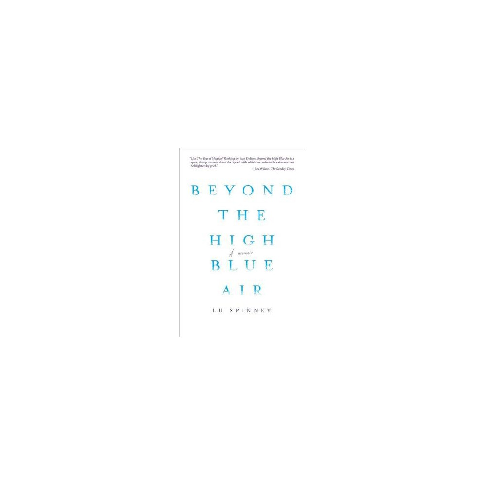 Beyond the High Blue Air - by Lu Spinney (Paperback)