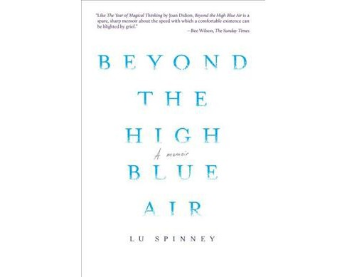 Beyond the High Blue Air -  by Lu Spinney (Paperback) - image 1 of 1
