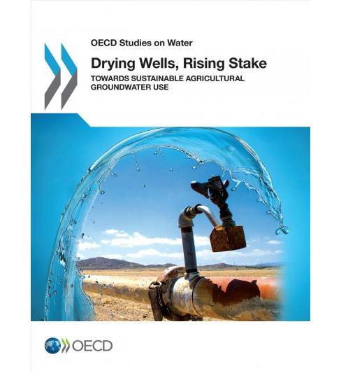 Drying Wells, Rising Stakes : Towards Sustainable Agricultural Groundwater Use (Paperback) - image 1 of 1