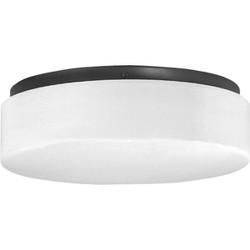 """Progress Lighting P7376 Hard-Nox 2 Light 11"""" Wide Outdoor Flush Mount Drum Ceiling Fixture"""