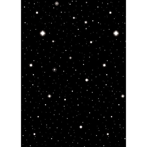 Hollywood Starry Night Party Room Roll Backdrop, Black