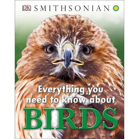 Everything You Need to Know about Birds - (Everything You Need Know) (Hardcover) - image 1 of 1