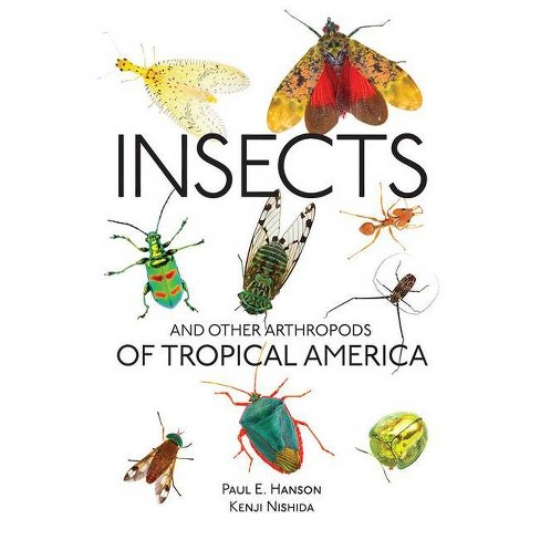 Insects and Other Arthropods of Tropical America - (Zona Tropical Publications) by  Paul E Hanson (Paperback) - image 1 of 1