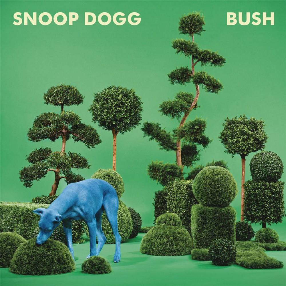 Bush, Pop Music