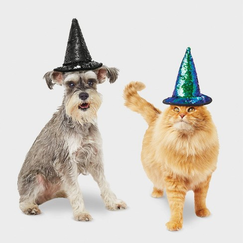 Witch Hat Halloween Dog and Cat Costume - Hyde & EEK! Boutique™ - image 1 of 3