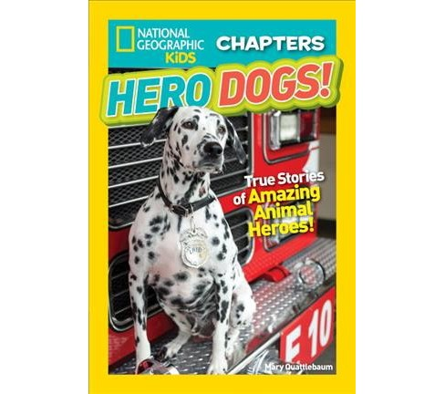 Hero Dogs! : True Stories of Amazing Animal Heroes! -  by Mary Quattlebaum (Paperback) - image 1 of 1