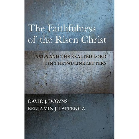 The Faithfulness of the Risen Christ - by  David J Downs & Benjamin J Lappenga (Hardcover) - image 1 of 1