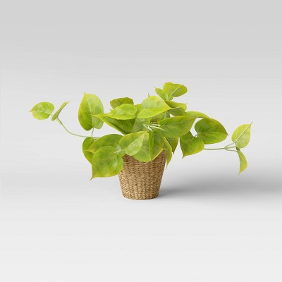 """13"""" x 14"""" Artificial Lime Pothos Plant in Basket - Threshold™"""