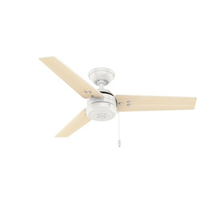 "44"" Cassius Damp Rated Ceiling Fan - Hunter"