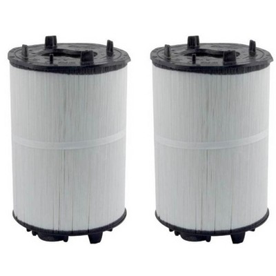 2) Sta-Rite 27002-0100S System 2 3 PLM100 Module Cartridge Filters 270020100S