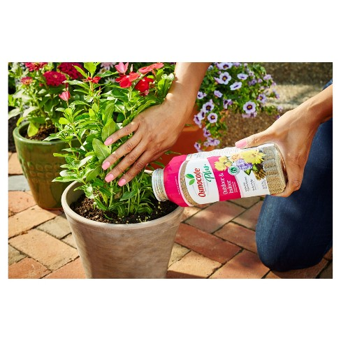 Osmocote Plus Outdoor & Indoor Smart Release Plant Food 2lb