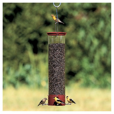 """Droll Yankees Yankee Dipper Collapsing Straight Perch Squirrel Proof Bird Feeder - Red - 21"""""""