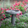 "17"" Bird Bath with Pedestal Charcoal - Bloem - image 2 of 4"