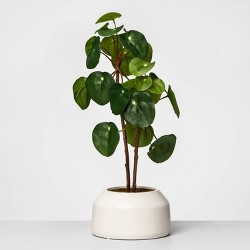 """22"""" x 9.5"""" Artificial Potted Pilea Plant Green - Opalhouse™"""