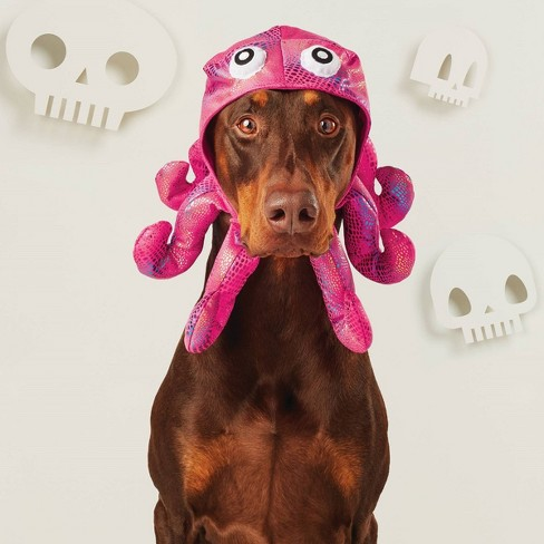 Octopus Hat Dog & Cat Costume - Hyde & EEK! Boutique™ - image 1 of 2