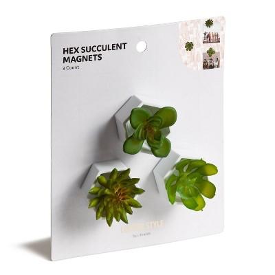 3pk Locker Hex Pot Succulent Magnets - U Brands