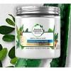 Herbal Essences Bio Renew Coconut Milk & Aloe Hydrating Hair Mask for Dry Damaged Hair - 8 fl oz - image 3 of 3