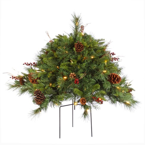 Vickerman 2' Cibola Mixed Berry Artificial Christmas Bush with 100 Warm White LED Lights - image 1 of 2