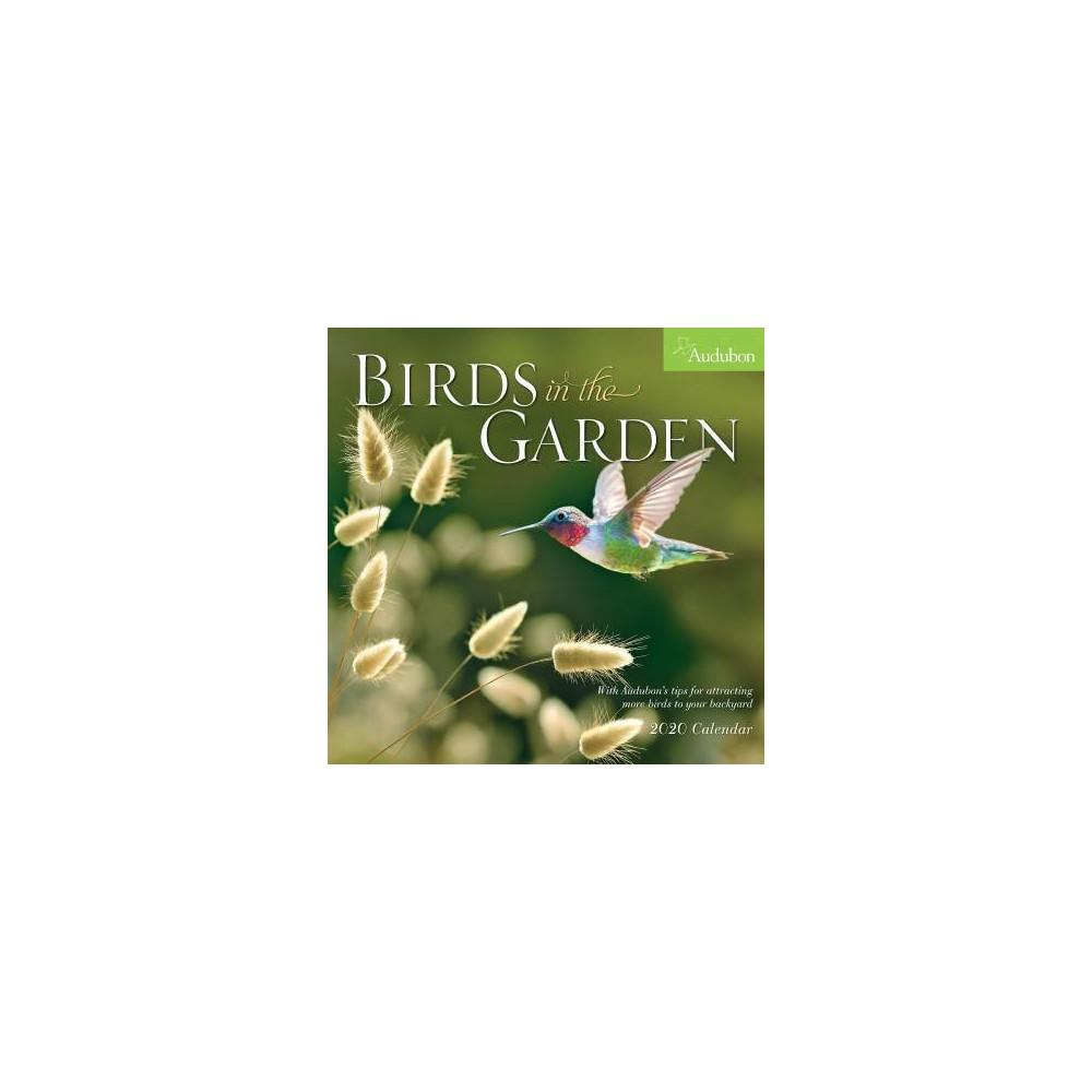 Audubon Birds in the Garden 2020 Calendar - (Paperback)