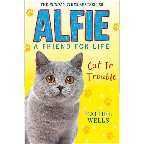 Alfie Cat in Trouble - by  Rachel Wells (Paperback) - image 1 of 1