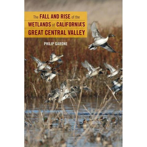 The Fall and Rise of the Wetlands of California's Great Central Valley - by  Philip Garone (Hardcover) - image 1 of 1