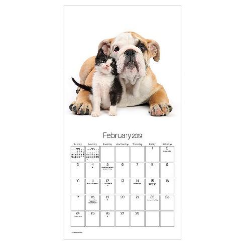 February 2019 Calendars Dog 2019 Wall Calendar Buddies   Trends International : Target