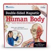 Learning Resources Double-Sided Magnetic Human Body - image 3 of 4