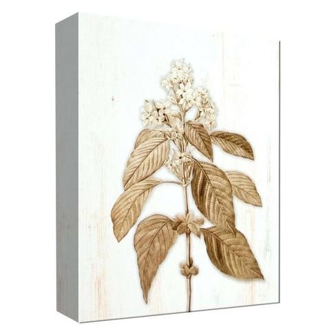 "Sephia Flower I Decorative Canvas Wall Art 11""x14"" - PTM Images - image 1 of 1"
