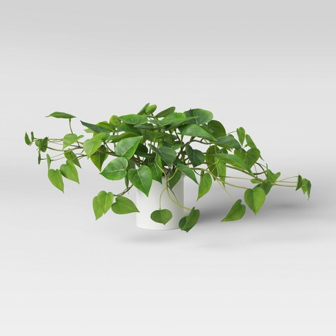 """14"""" x 28"""" Artificial Pothos Plant in Pot - Threshold™ - image 1 of 4"""