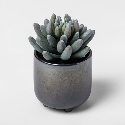 Faux Succulent in Black Pot - Project 62™