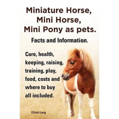 Miniature Horse, Mini Horse, Mini Pony as Pets. Facts and Information. Miniature Horses Care, Health, - image 1 of 1