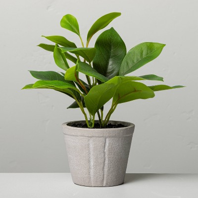 "7"" Mini Faux Azalea Potted Plant - Hearth & Hand™ with Magnolia"