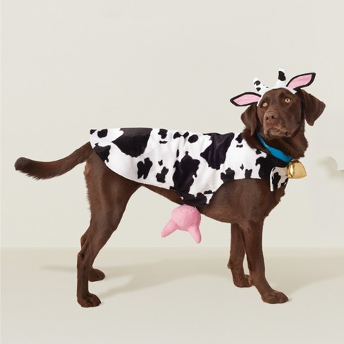 Cow Dog Costume Black White Hyde And Eek Boutique