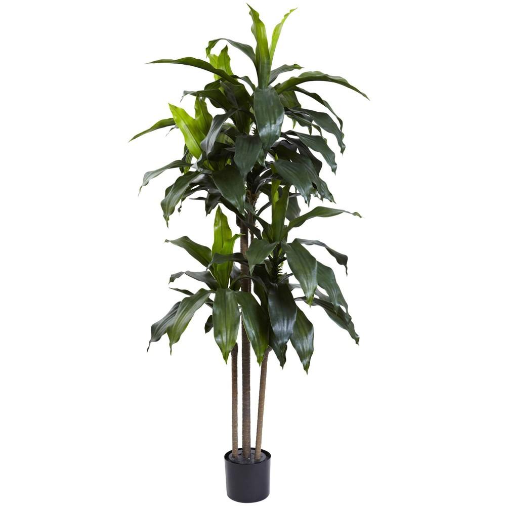 5 39 Dracaena Plant Nearly Natural
