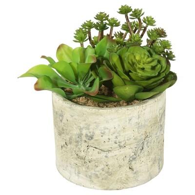 Artificial Succulent Arrangement (8 )Green - Vickerman