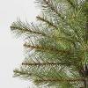 2.5ft Unlit Douglas Fir Potted Artificial Christmas Tree - Wondershop™ - image 2 of 2