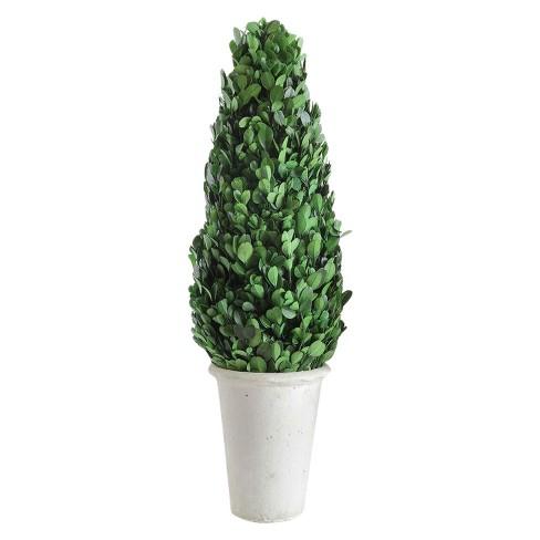 Boxwood Cone Topiary - 3R Studios - image 1 of 4