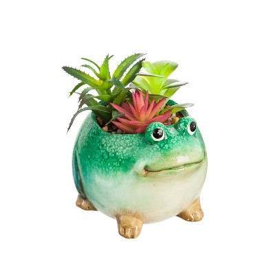 Evergreen Cypress Home Ceramic Frog Planter with Succulent
