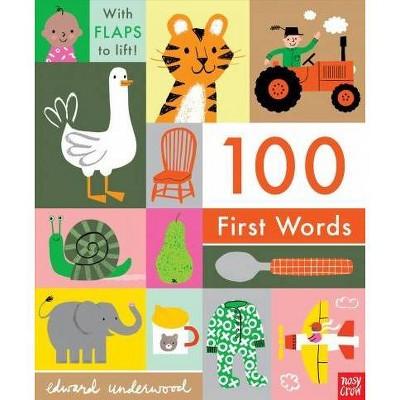 100 First Words - BRDBK (Hardcover)