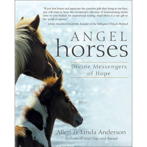 Angel Horses - by  Allen Anderson & Linda Anderson (Paperback) - image 1 of 1