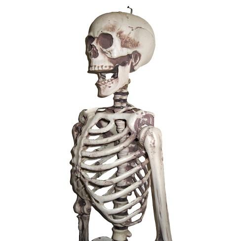5 ft. Halloween Hanging Skeleton : Target