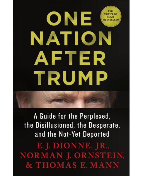 One Nation After Trump : A Guide for the Perplexed, the Disillusioned, the Desperate, and the Not-yet - image 1 of 1