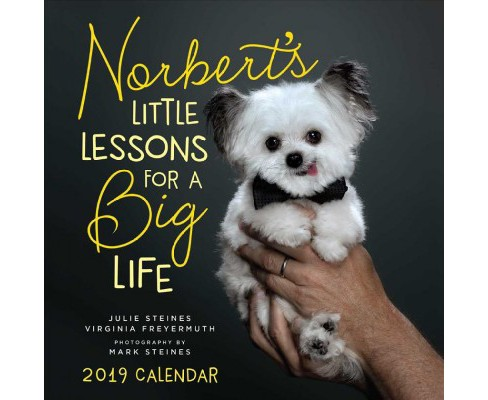 Norbert's Little Lessons for a Big Life 2019 Calendar -  (Paperback) - image 1 of 1